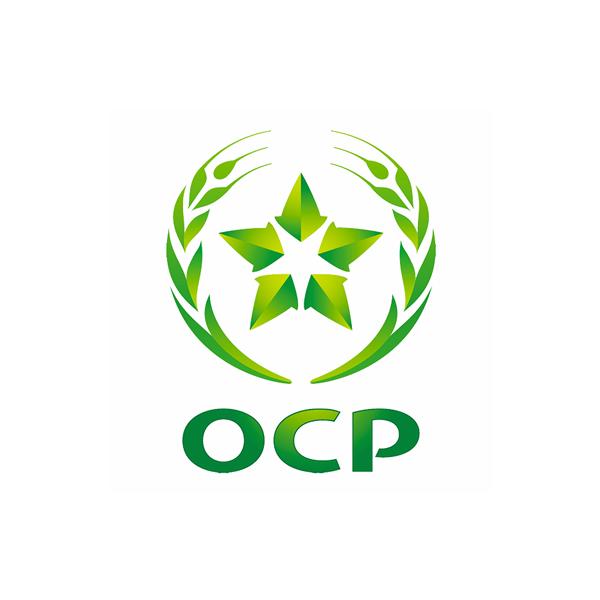 1 Ocp